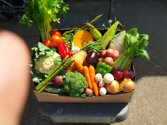 Fresh fruit vegetables home delivery Caboolture Bribie Island Burpengary Morayfield Beachmere Sandstone Point Toorbul Ningi Banksia Beach Bellara White patch (1)