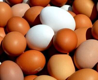 fresh eggs 12 pk Fresh fruit vegetables home delivery Caboolture Bribie Island Burpengary Morayfield Beachmere Sandstone Point Toorbul Ningi Banksia Beach Bellara White patch Bongaree